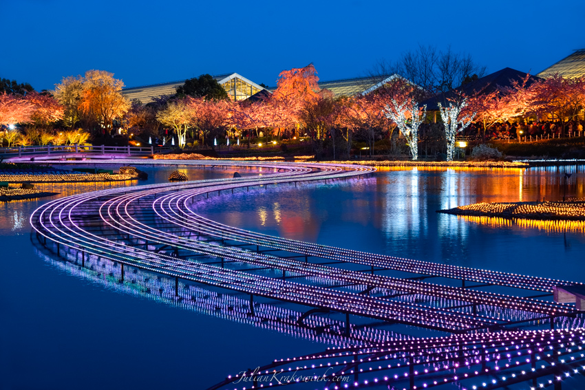 Winter pond illumination at Nabana no Sato